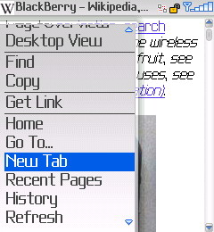 BlackBerry Browser Screenshot 1