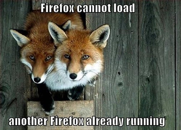 Firefox Cannot Load (Pic)