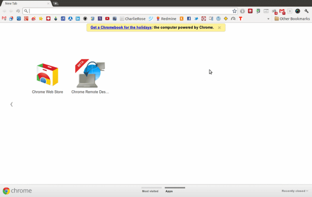 Google Chrome: Now With Ads!